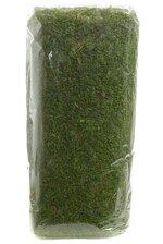 """18"""" X 24FT NATURAL MOSS SHEET GREEN"""