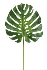 "27.5"" MEDIUM MONSTERA LEAF SPRAY GREEN"