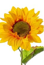 "24"" SUNFLOWER SPRAY YELLOW"