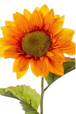 "24"" SUNFLOWER SPRAY ORANGE"