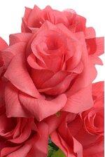 """16"""" PRINTING ROSE BUSH CORAL"""