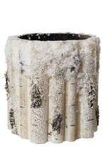 "6.5"" x 7"" PLASTIC SNOW BIRCH BRANCH CONTAINER NAFR"