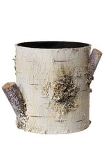 "4.5"" x 4.25"" PLASTIC BIRCH BARK CONTAINER NATURAL"