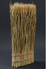 """23.5"""" WHEAT/GRASS/TWIG STAND NATURAL"""