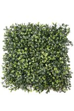 """12"""" TRIMMED BOXWOOD SQUARE GREEN"""