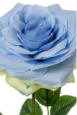 "20"" OPEN ROSE SPRAY BLUE"