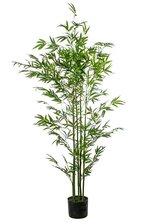 5FT MINI BAMBOO TREE IN POT GREEN