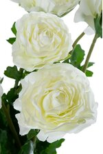 "19"" SILK RANUNCULUS BUSH WHITE"