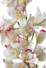 """36"""" ORCHID CATTLEYA PLANT WHITE"""