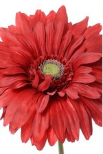 "29"" SILK GERBERA DAISY RED"