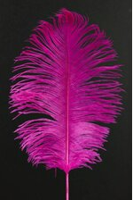 "12""-14"" OSTRICH FEATHER HOT PINK PKG/12"
