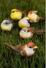 """3.5"""" FEATHER BIRD ASSORT PKG/18"""