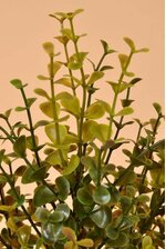 "14"" PLASTIC BOXWOOD BUSH GREEN/BURGUNDY"
