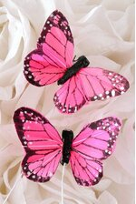 """2"""" FEATHER BUTTERFLY PINK PKG/12"""