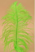 "12"" - 14"" OSTRICH FEATHER LIME PKG/12"