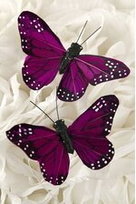 "3"" BUTTERFLY PURPLE PKG/12"