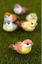 """1.5"""" MUSHROOM BIRD ASSORTED PKG/24"""