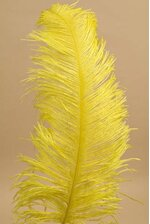"18""- 22"" SINGLE OSTRICH FEATHER YELLOW"