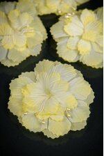 "3"" FLAT CARNATION W/PIPS YELLOW PKG/12"