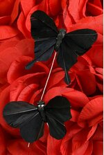 """3"""" BUTTERFLY ASSORTED PURE BLACK PKG/12"""
