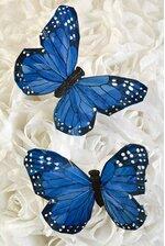 5'' BUTTERFLY BLUE PKG/12