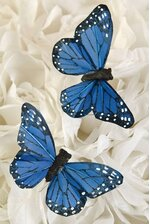 3'' BUTTERFLY BLUE PKG/12