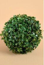 "6"" BOXWOOD BALL GREEN"