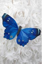 "5"" BUTTERFLY ROYAL BLUE PKG/12"