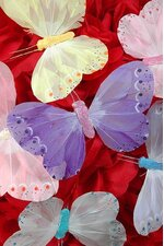 "5"" PASTEL BUTTERFLY ASSORTED PKG/12"