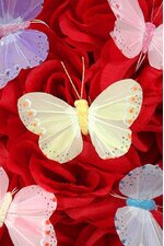 "3"" PASTEL BUTTERFLY ASSORTED PKG/12"