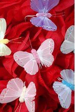 """2"""" PASTEL BUTTERFLY ASSORTED PKG/12"""