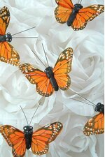 "2"" BUTTERFLY MONARCH PKG/12"