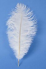 "14""-16"" OSTRICH FEATHER WHITE PKG/12"