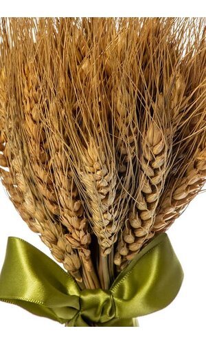 "9.5"" X 3.5"" WHEAT GRASS STAND BOUQUET NATURAL"