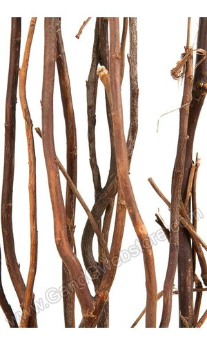 5-6 FT NATURAL CURLY WILLOW BROWN PKG/5