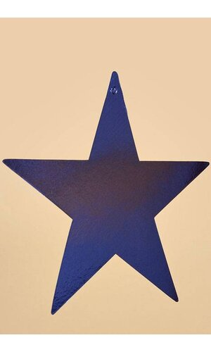 """9"""" FOIL STARS BLUE PKG/12"""