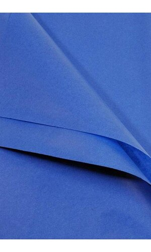 "20"" X 30"" TISSUE PAPER PARADE BLUE"