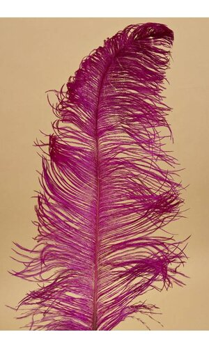 "18""-22"" OSTRICH FEATHER FUCHSIA PKG/12"