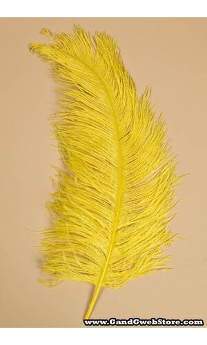 "18""-22"" OSTRICH FEATHER YELLOW PKG/12"