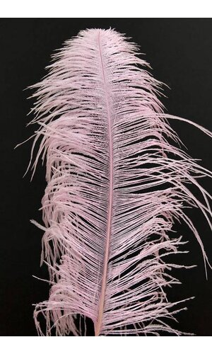 "14""-16"" OSTRICH FEATHER HOT PINK PKG/12"