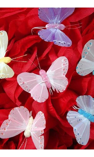 "2"" PASTEL BUTTERFLY ASSORTED PKG/12"