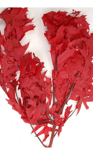 TRANS OAK LEAVES 1LB RED