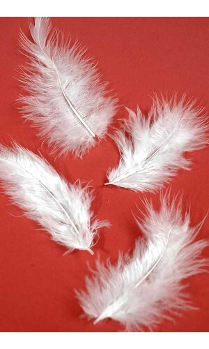 """3.5"""" OSTRICH FEATHERS WHITE PKG/100"""
